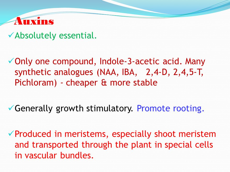 Auxins Absolutely essential.
