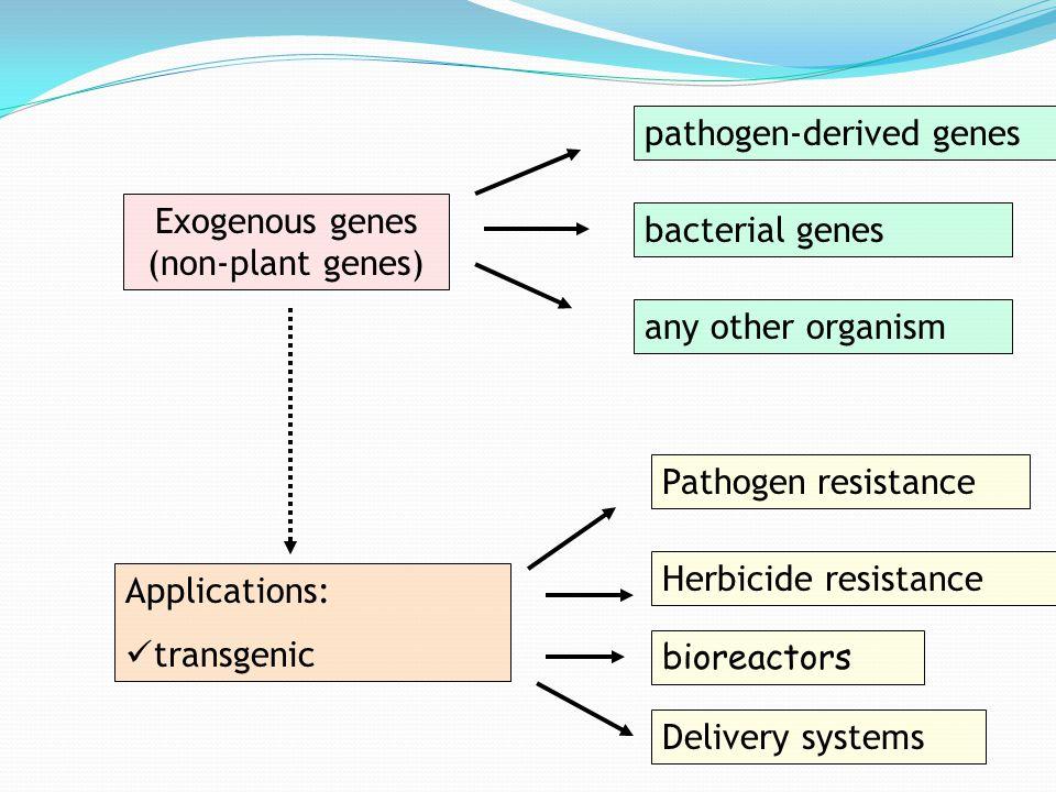 Exogenous genes (non-plant genes)