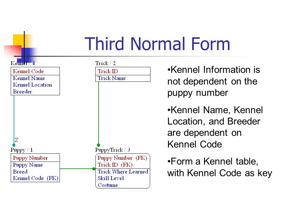 Third Normal Form Kennel Information is not dependent on the puppy number. Kennel Name, Kennel Location, and Breeder are dependent on Kennel Code.
