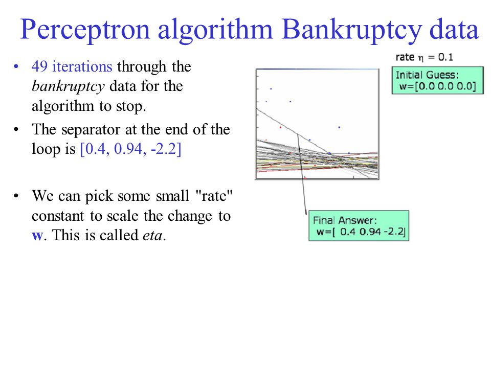 Perceptron algorithm Bankruptcy data