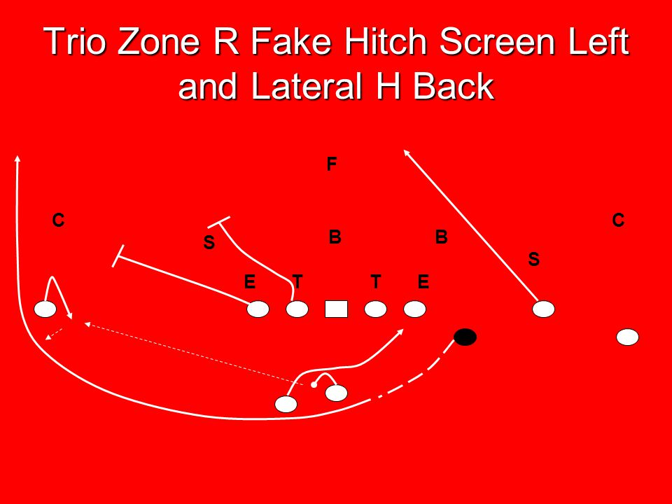 Trio Zone R Fake Hitch Screen Left and Lateral H Back