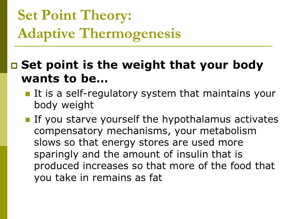 Set Point Theory: Adaptive Thermogenesis