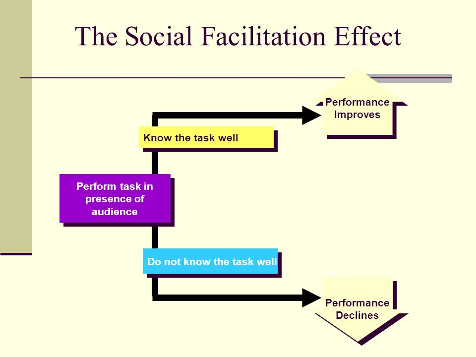 social facilitation psychology essay Social facilitation, being surrounded by enthusiastic and well-informed artists in addition to art being reasonably easy to me, has bolstered social facilitation social facilitation.