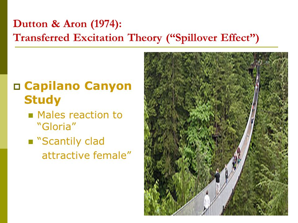 Dutton & Aron (1974): Transferred Excitation Theory ( Spillover Effect )
