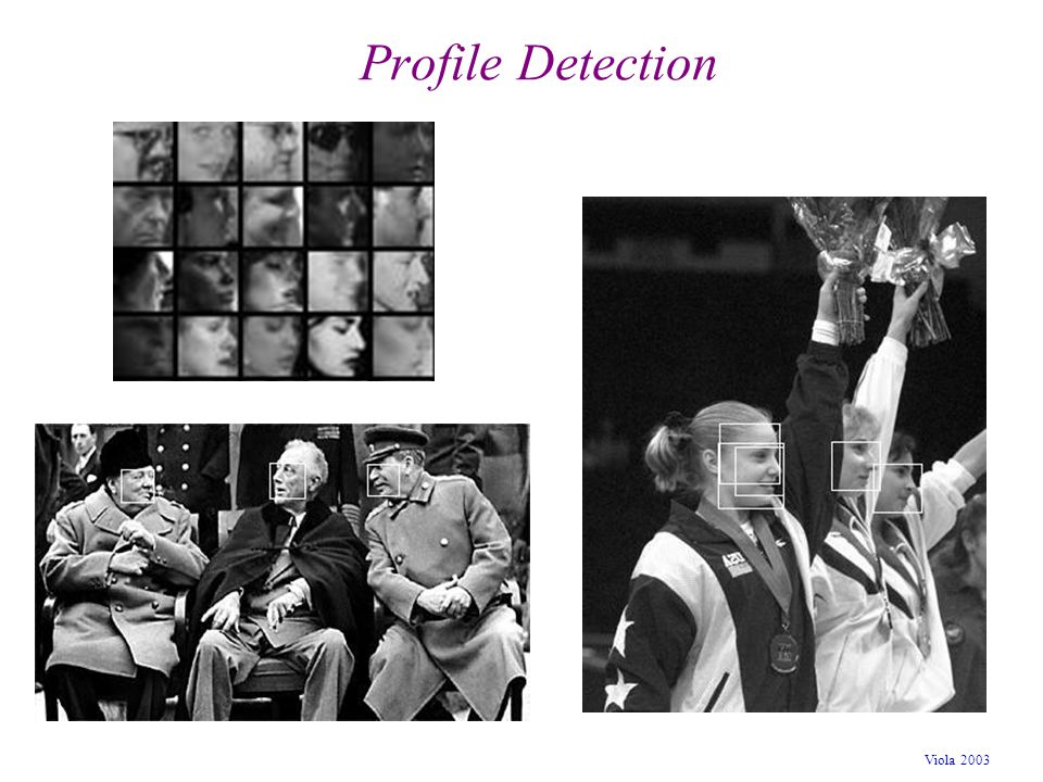 Profile Detection