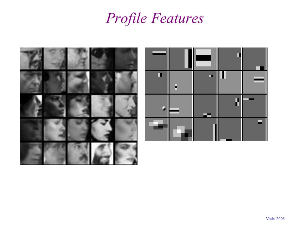 Profile Features