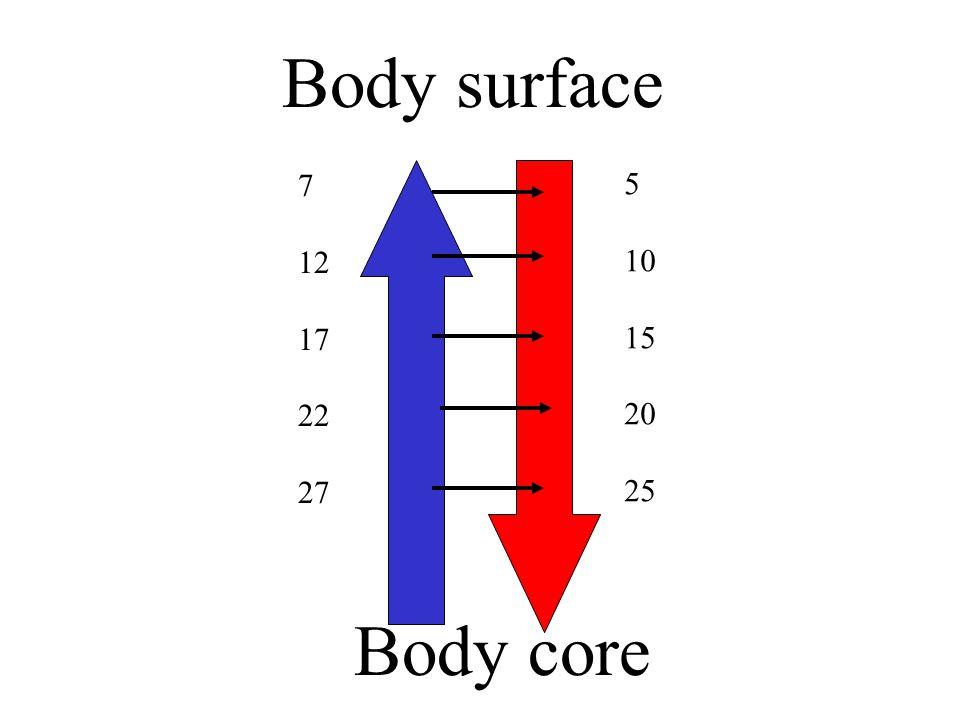 Body surface 7 12 17 22 27 5 10 15 20 25 Body core
