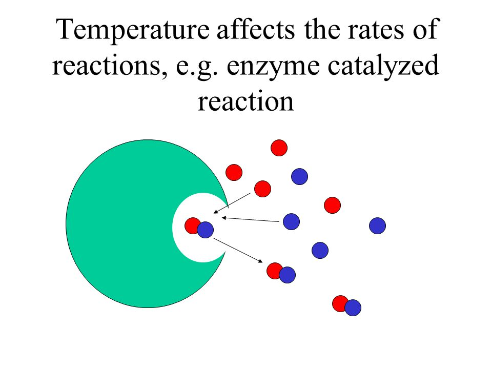 Temperature affects the rates of reactions, e. g