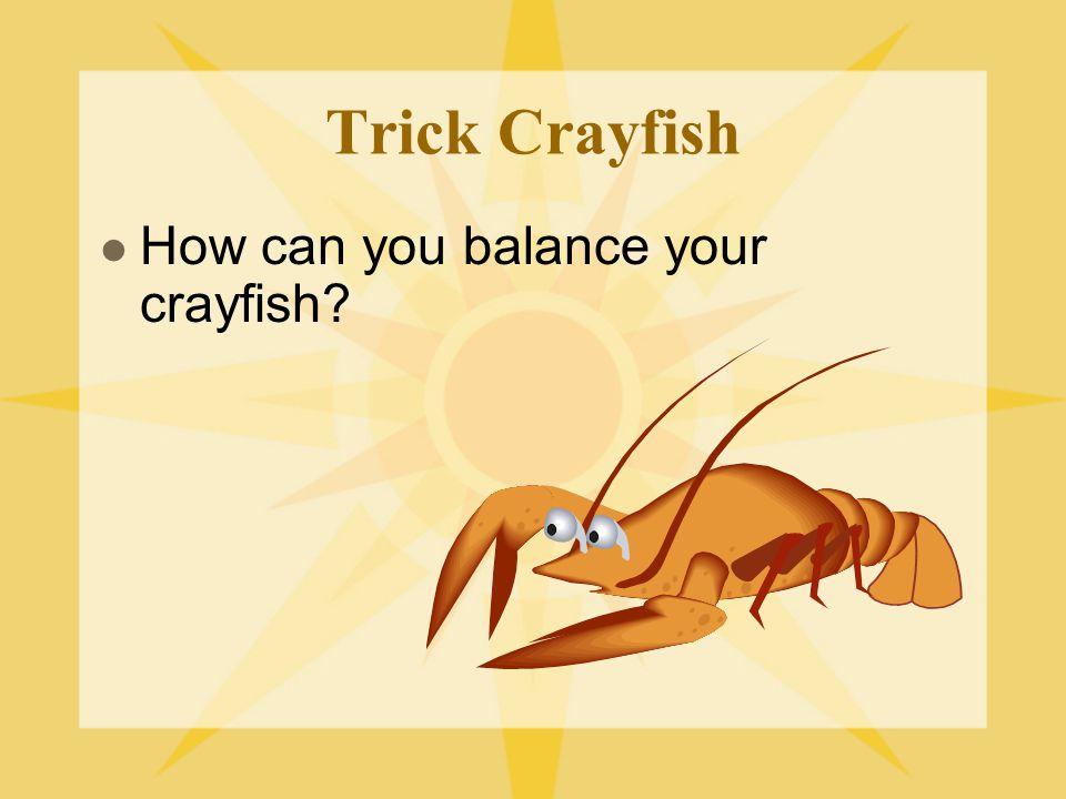 Trick Crayfish How can you balance your crayfish