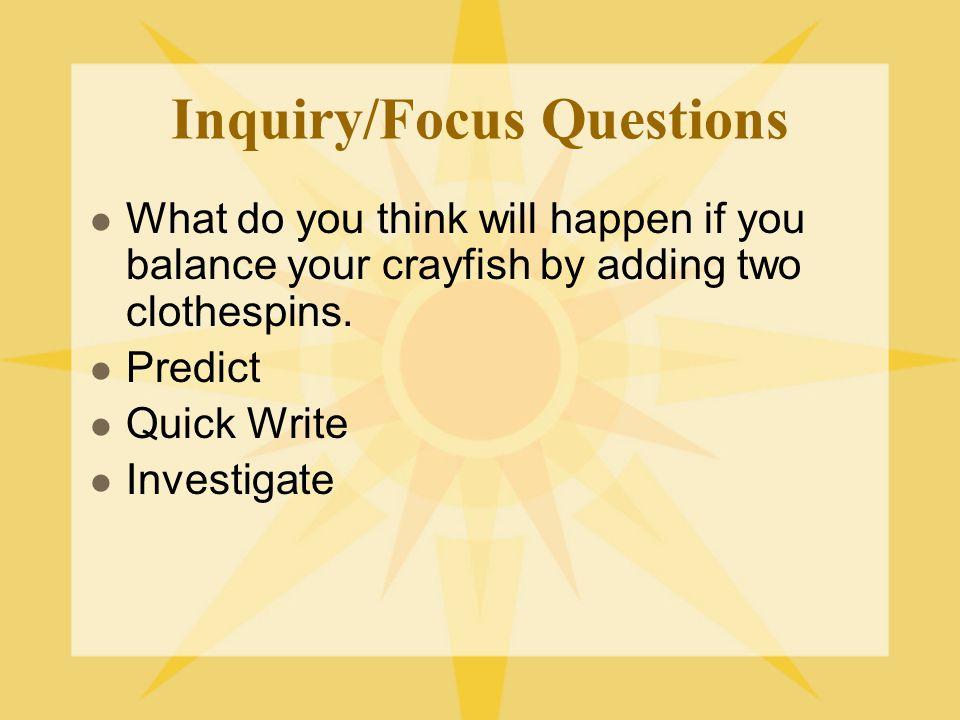Inquiry/Focus Questions