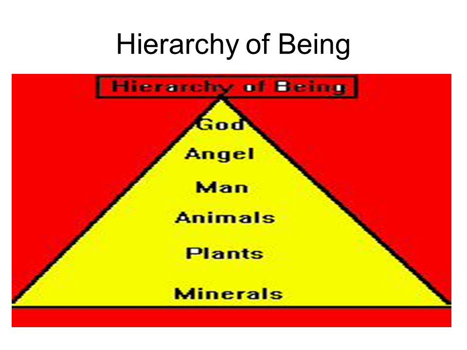 Hierarchy of Being