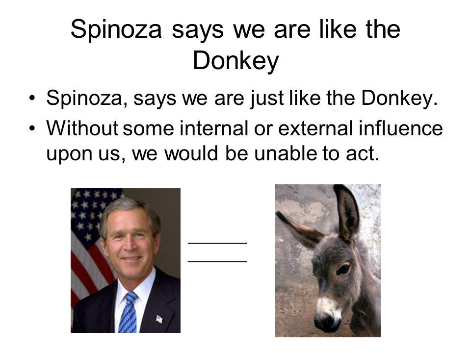 Spinoza says we are like the Donkey