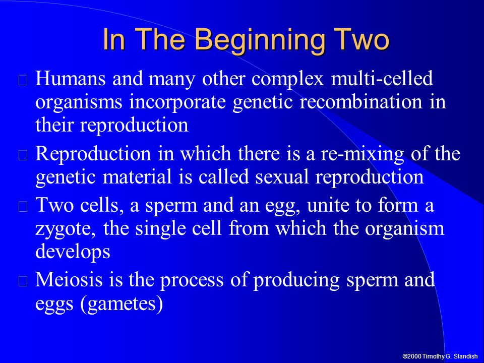 In The Beginning Two Humans and many other complex multi-celled organisms incorporate genetic recombination in their reproduction.
