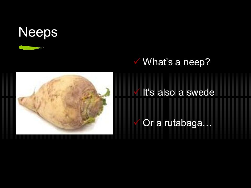 Neeps What's a neep It's also a swede Or a rutabaga…
