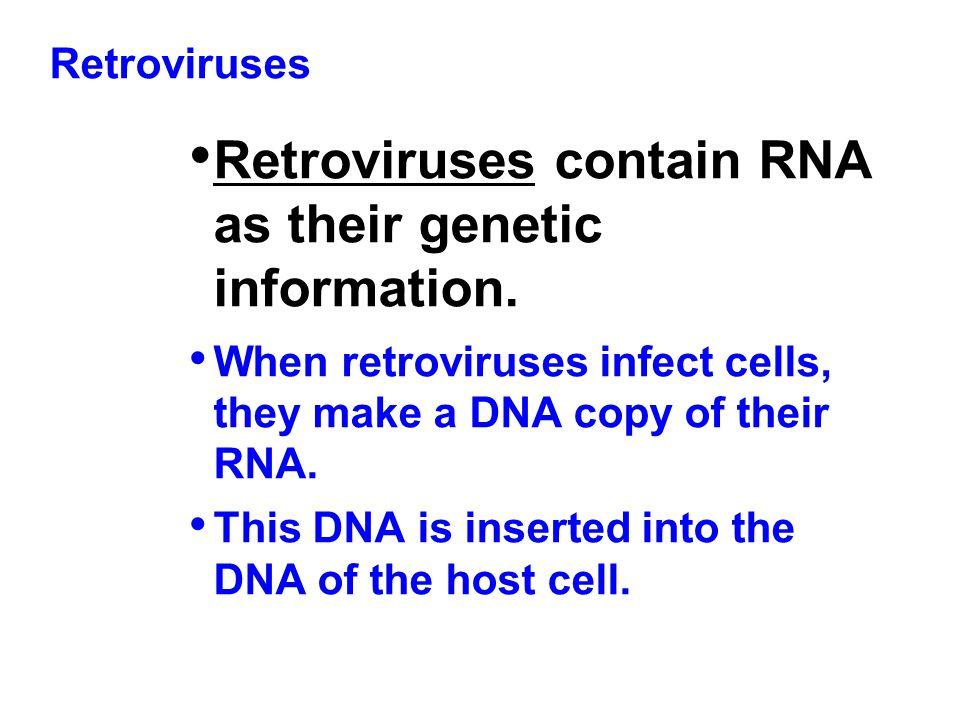 Retroviruses contain RNA as their genetic information.