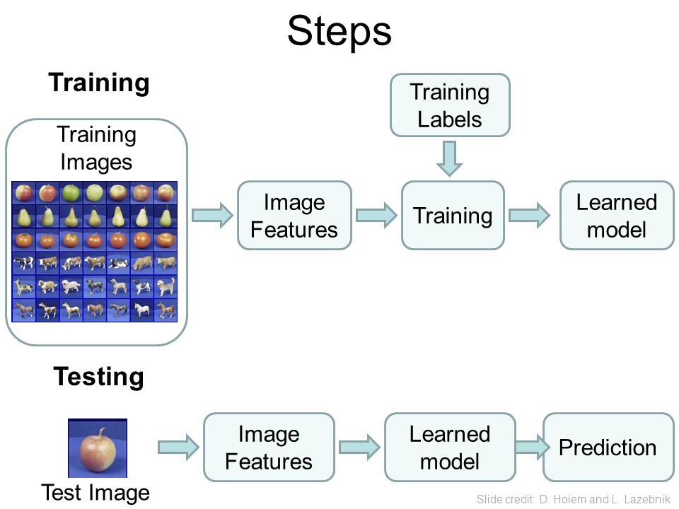 Steps Training Testing Training Labels Training Images Image Features