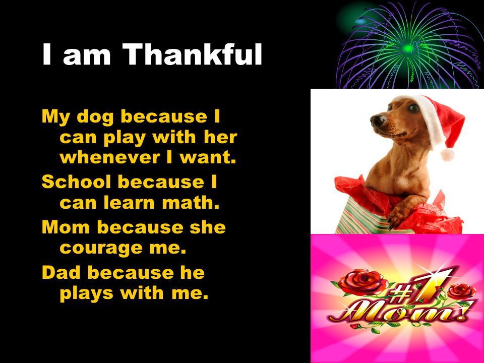I am Thankful My dog because I can play with her whenever I want.