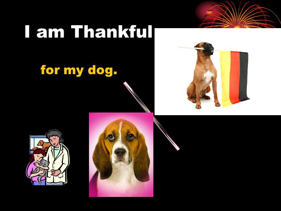 I am Thankful for my dog.