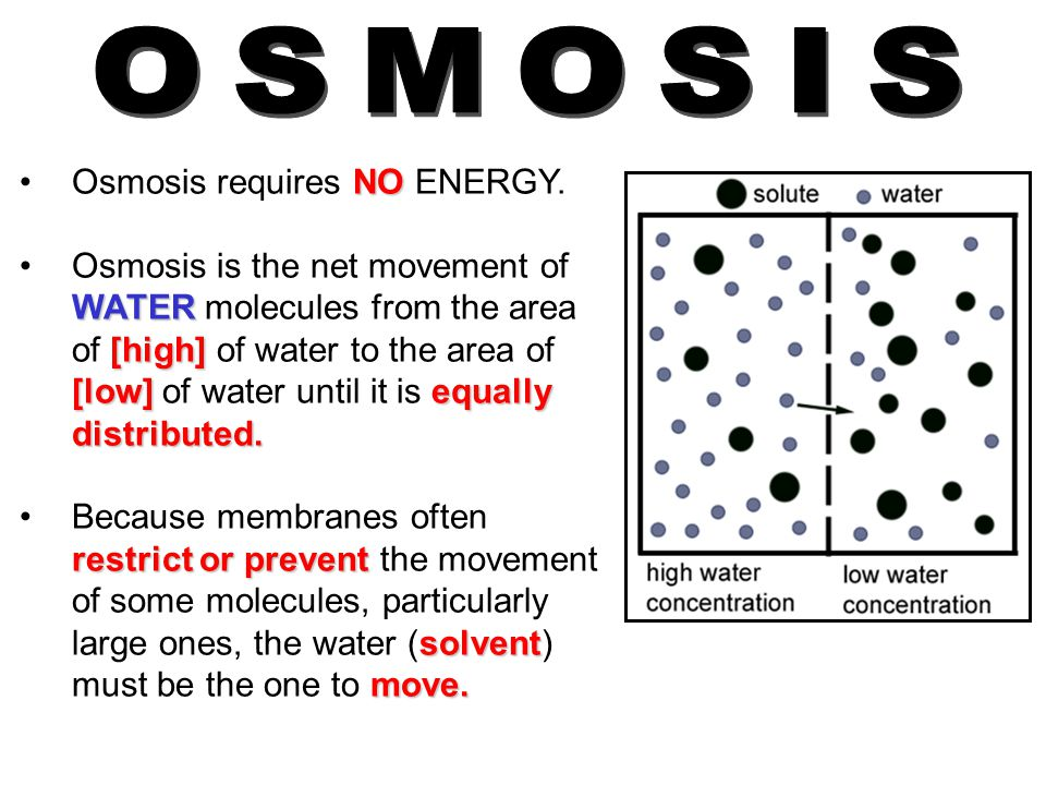 OSMOSIS Osmosis requires NO ENERGY.