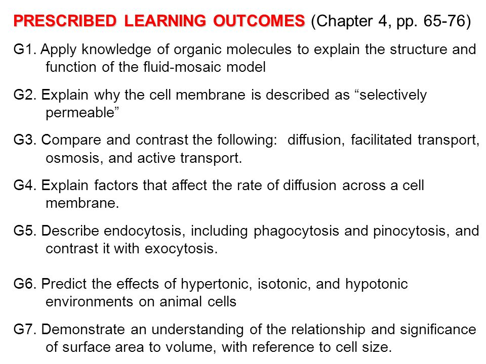 PRESCRIBED LEARNING OUTCOMES (Chapter 4, pp. 65-76)