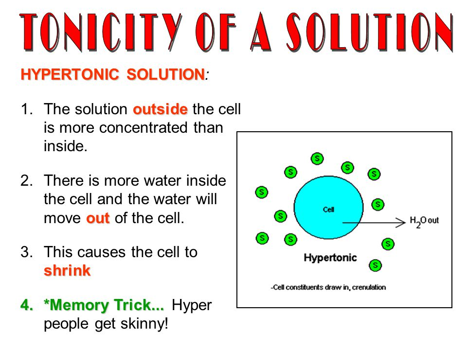 TONICITY OF A SOLUTION HYPERTONIC SOLUTION: