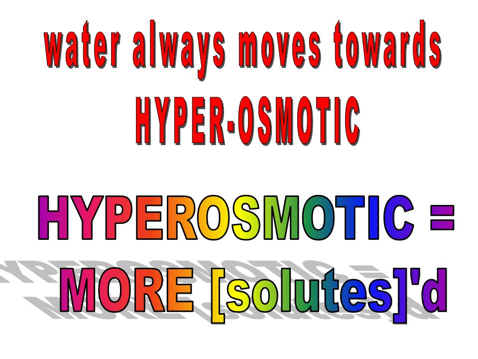 water always moves towards