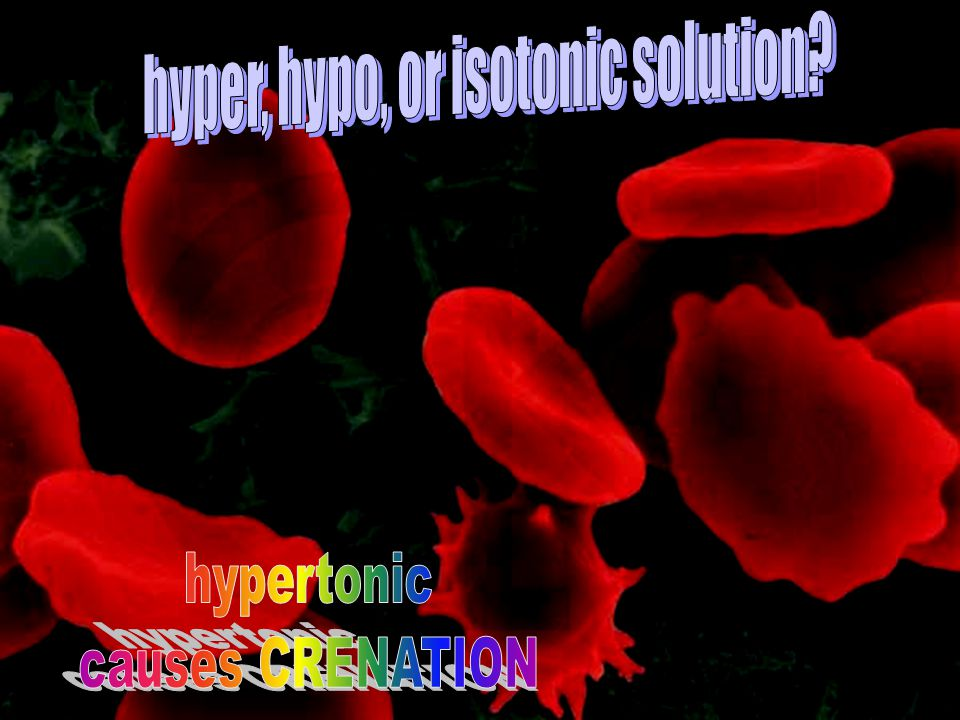 hyper, hypo, or isotonic solution