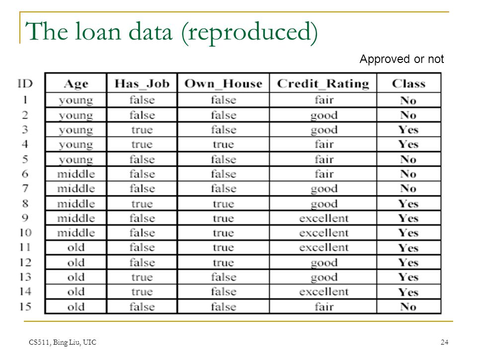 The loan data (reproduced)