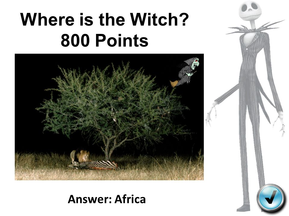 Where is the Witch 800 Points