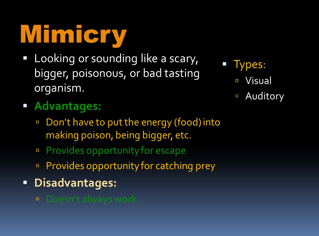 Mimicry Looking or sounding like a scary, bigger, poisonous, or bad tasting organism. Advantages: