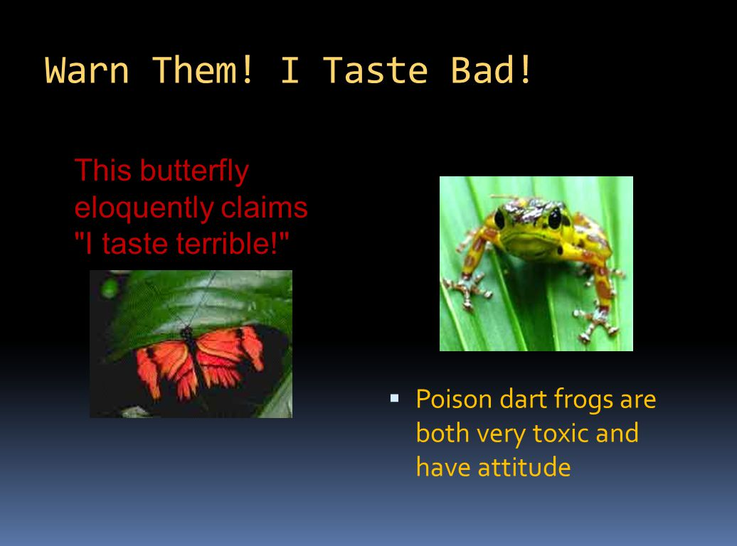 Warn Them. I Taste Bad. Poison dart frogs are both very toxic and have attitude.