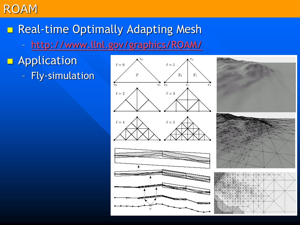 Real-time Optimally Adapting Mesh Application
