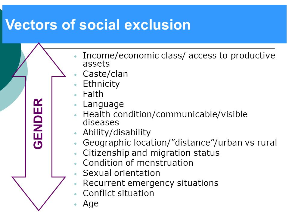 Vectors of social exclusion