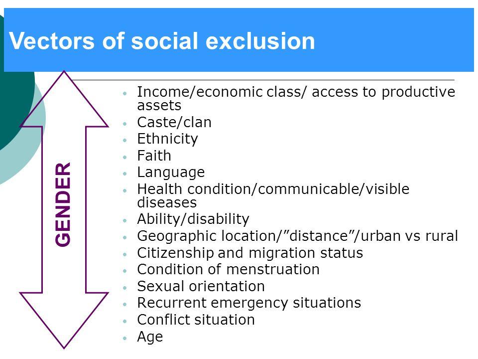 Vectors of social exclusion