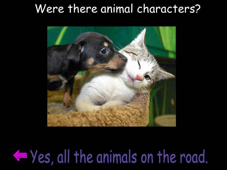Yes, all the animals on the road.