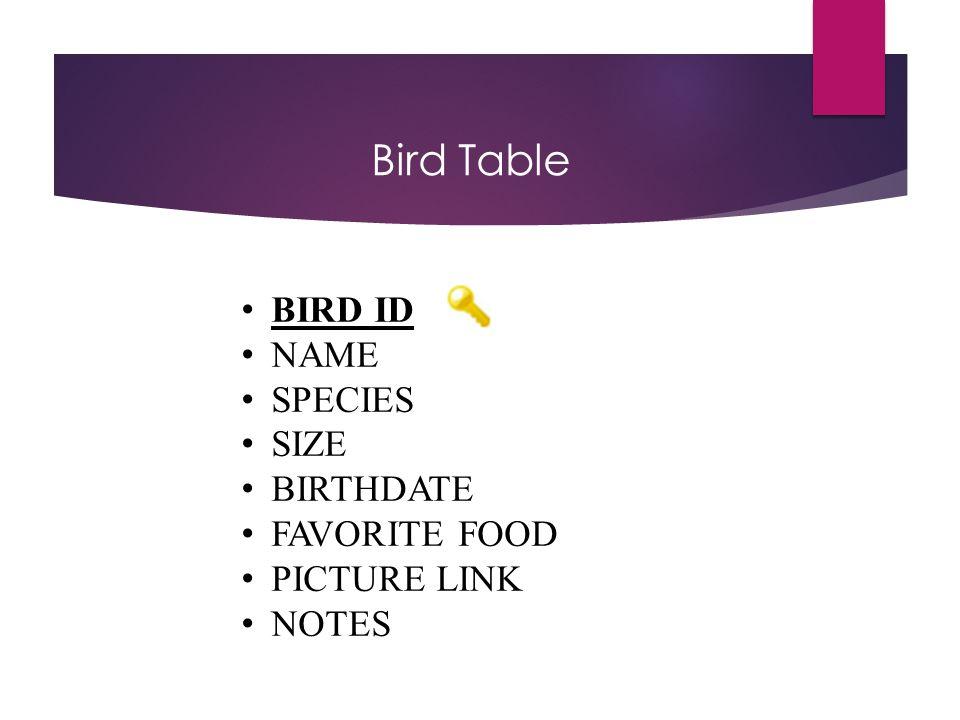 Bird Table BIRD ID NAME SPECIES SIZE BIRTHDATE FAVORITE FOOD