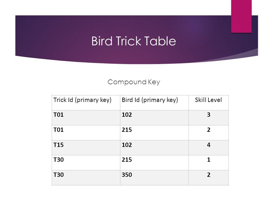 Bird Trick Table Compound Key Trick Id (primary key)