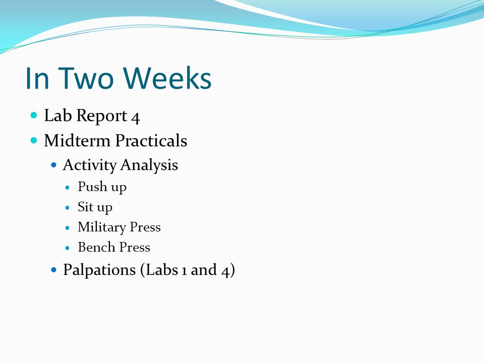 In Two Weeks Lab Report 4 Midterm Practicals Activity Analysis