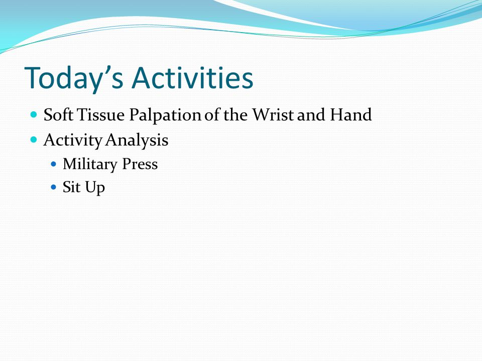 Today's Activities Soft Tissue Palpation of the Wrist and Hand