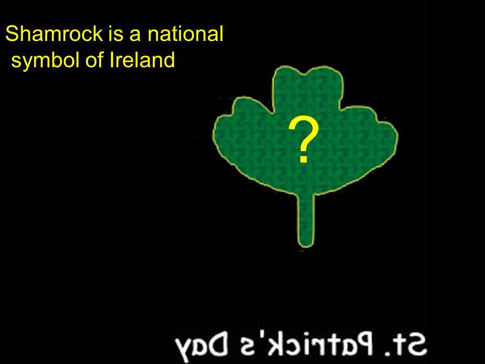 Shamrock is a national symbol of Ireland