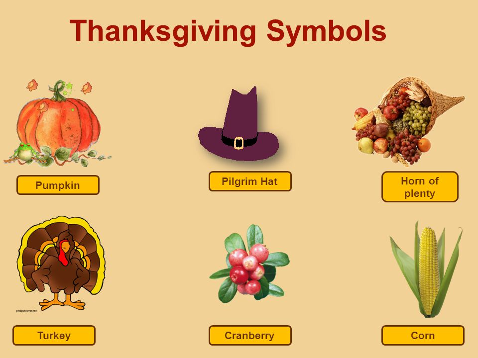 Thanksgiving Symbols Pilgrim Hat Horn of plenty Pumpkin Turkey