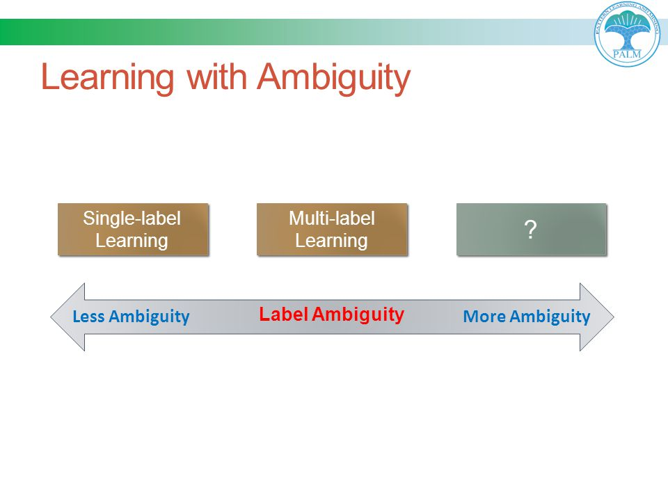 Learning with Ambiguity