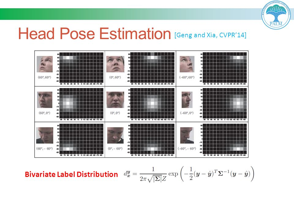 Head Pose Estimation Bivariate Label Distribution