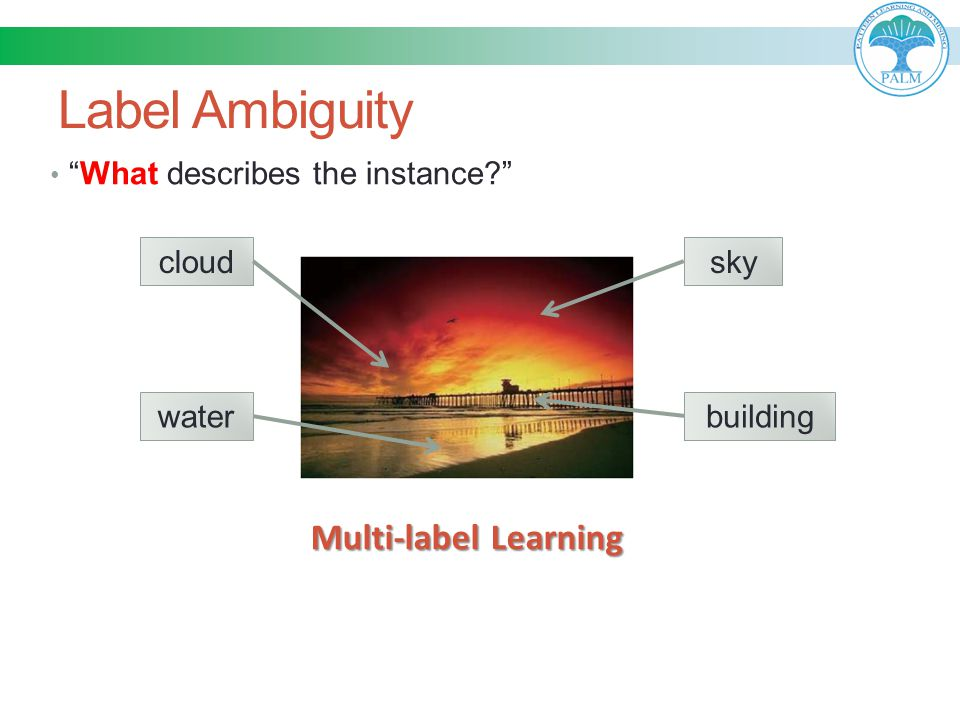 Label Ambiguity Multi-label Learning What describes the instance