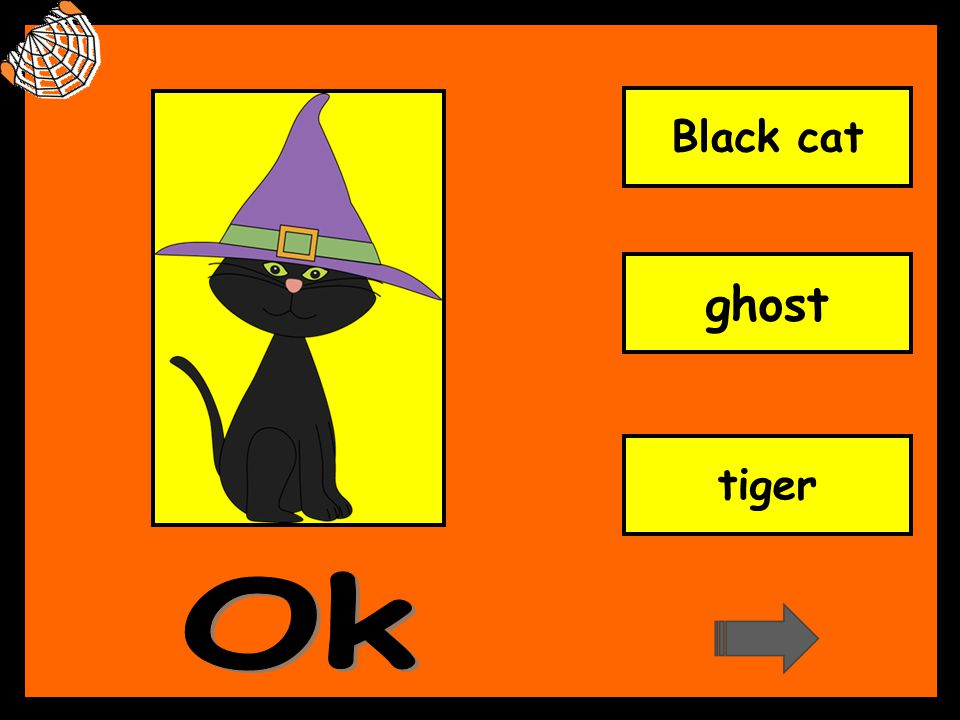 Black cat ghost tiger Ok