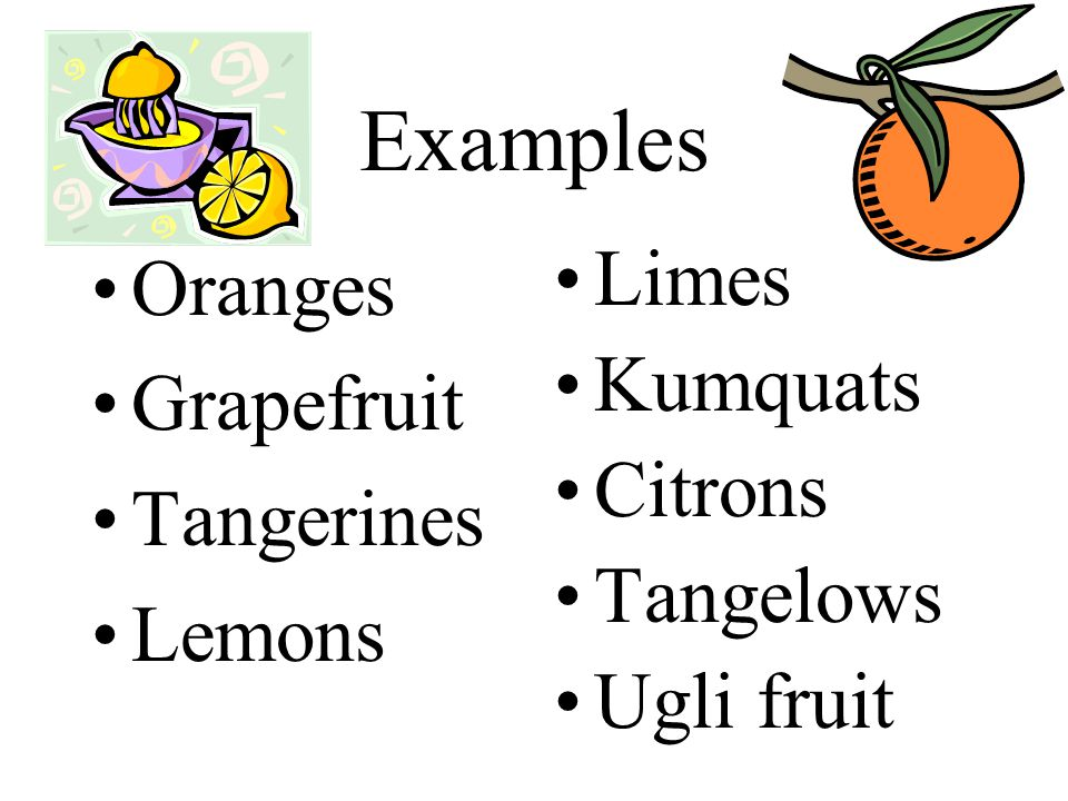 Examples Oranges Grapefruit Tangerines Lemons Limes Kumquats Citrons