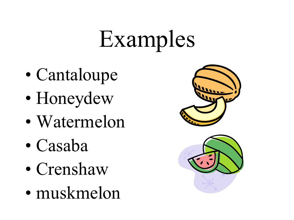 Examples Cantaloupe Honeydew Watermelon Casaba Crenshaw muskmelon