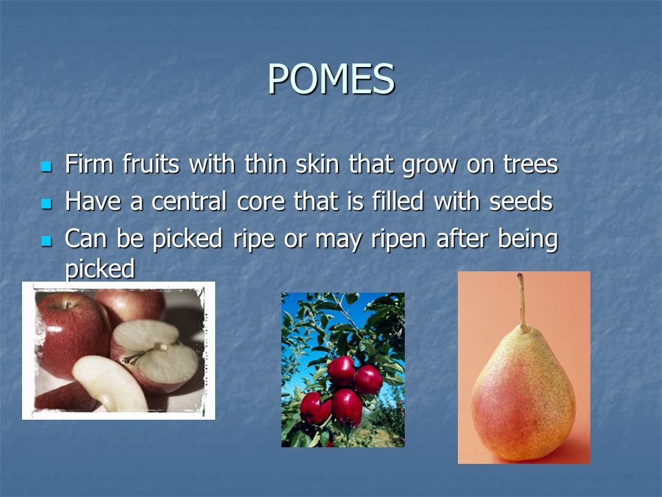 POMES Firm fruits with thin skin that grow on trees