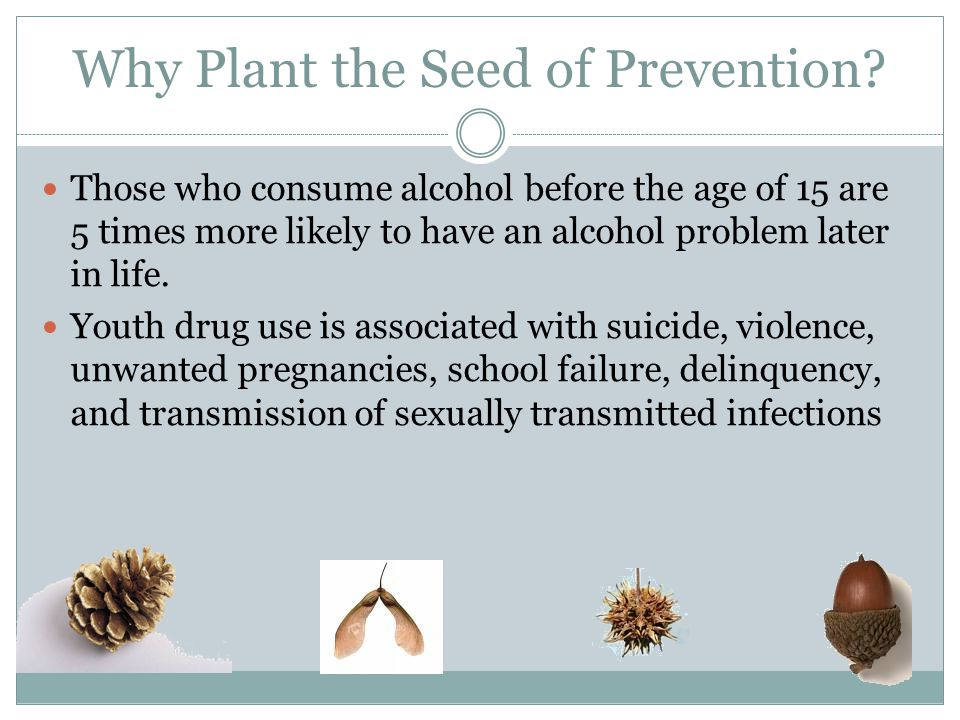 Why Plant the Seed of Prevention