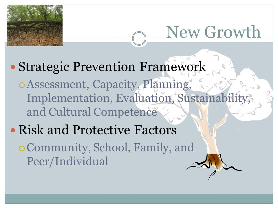 New Growth Strategic Prevention Framework Risk and Protective Factors